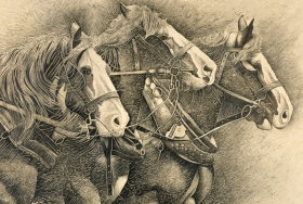 """Working horses"" Pencil - sTEBLC50"